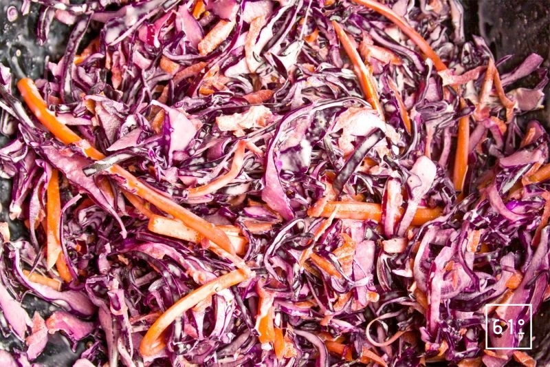 Salade de Coleslaw rouge