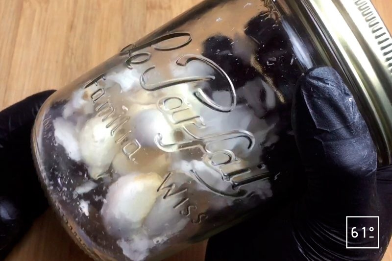 Secouer les gousses d'ail dans un bocal fermé