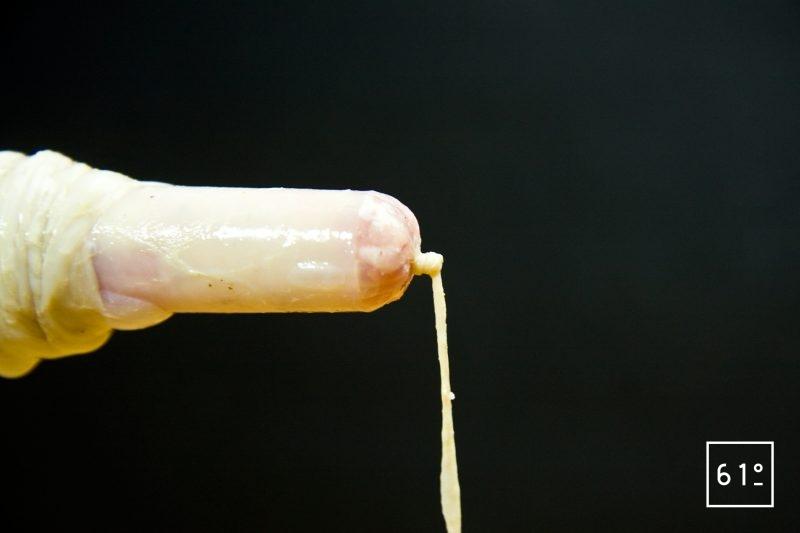 Nœud au bout du boyau à saucisse