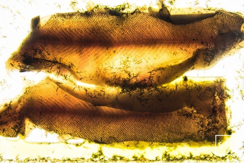 Filet de truite du Jura sous vide