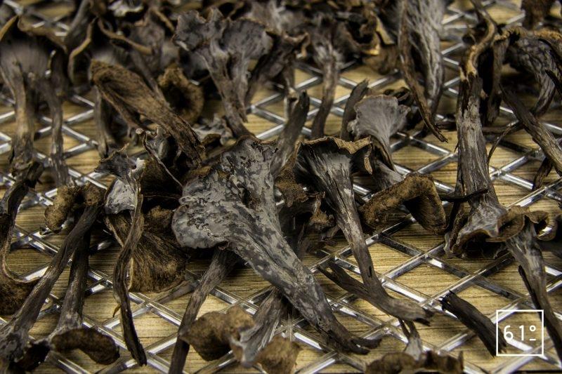 Trompettes des morts déposées sur un plateau de déshydratation