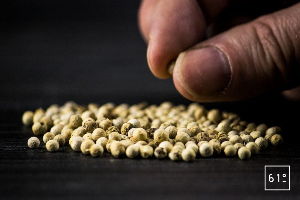 Comment goûter le poivre - goûter le poivre en grains entiers