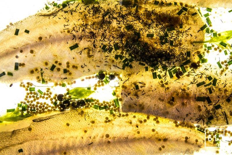 Merlan basse température et son émulsion aux herbes - cuire sous vide à basse température les filets de merlan avec leur peau