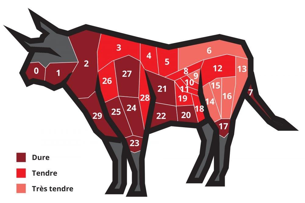 Différentes pièces de bœuf