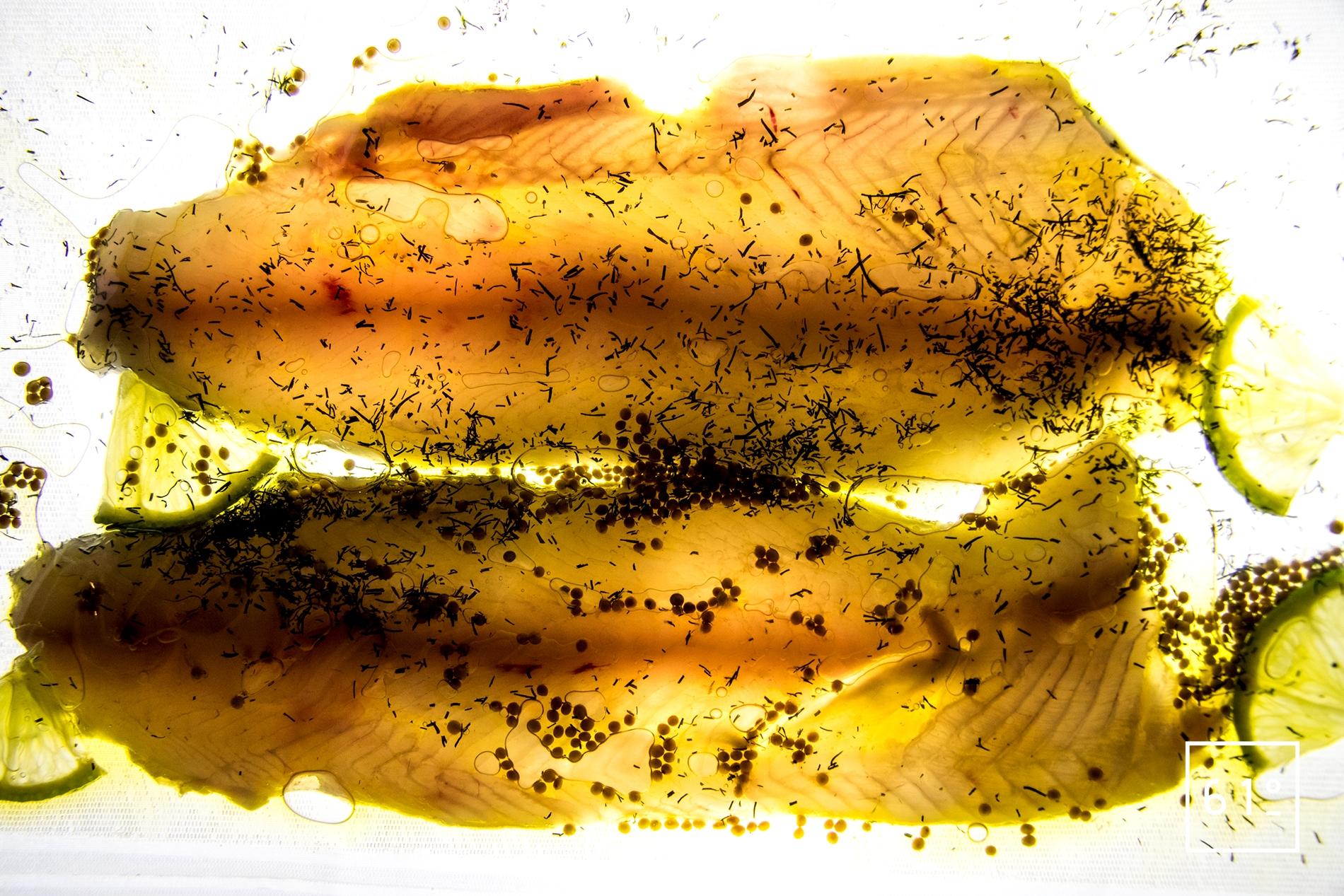 Calendrier Des Poissons Et Fruits De Mer De Saison.Calendrier Des Poissons De Saison Ingredient 61 Degres