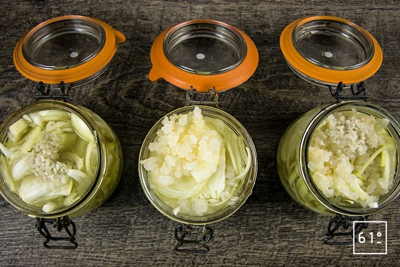 La lactofermentation sans sel ou comment faire une fermentation lactique sans sel - 3 pots remplis d'oignons avec sel ou el et grains de kéfir ou juste kéfir