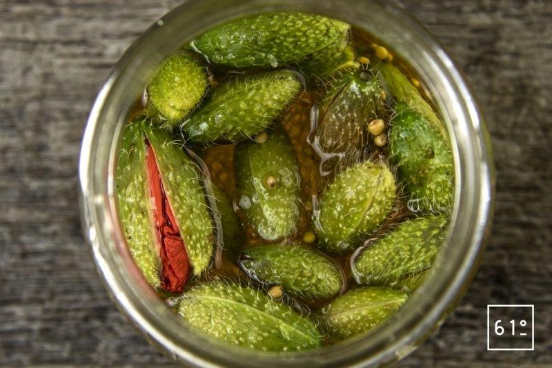 Pickles de coquelicot - rassembler la saumure te les bourgeons de coquelicot