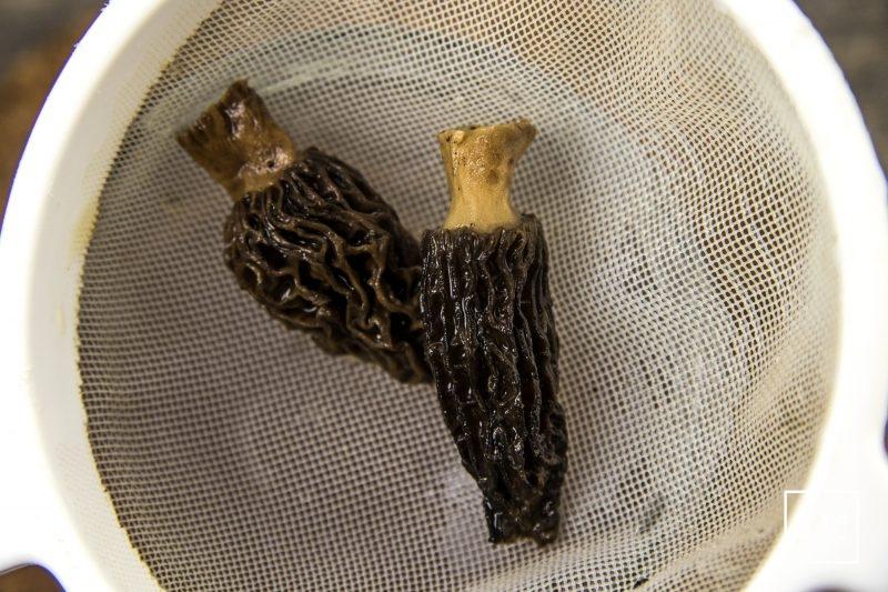 Pâté croute aux morbiers, aux tommes du Jura et aux morilles - filtrer