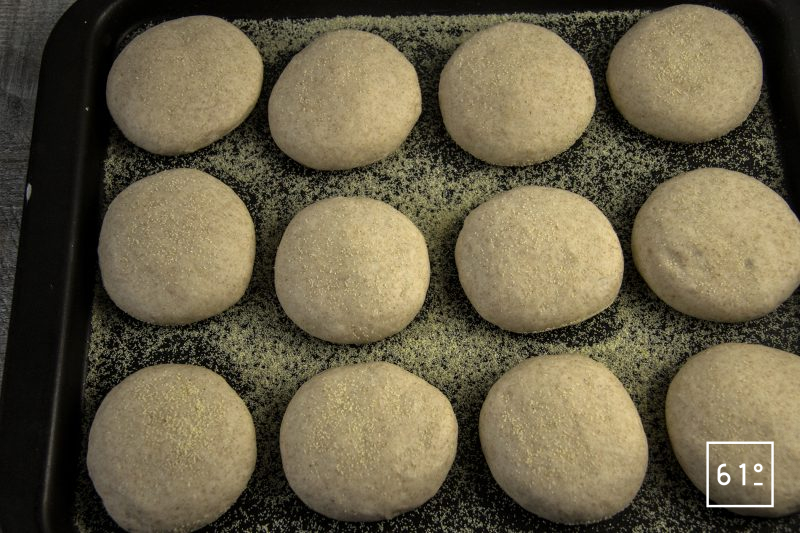 Muffin anglais au levain - mettre sur une plaque métallique avec la semoule